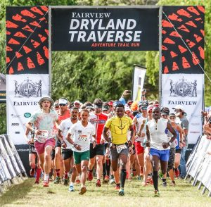 The Fairview Dryland Traverse concluded with an 11km out and back stage from the De Hoek mountain camp site on Sunday the 6th of November.